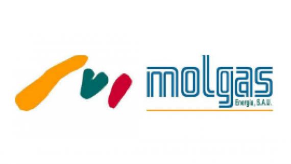 MOLGAS ENERGIA