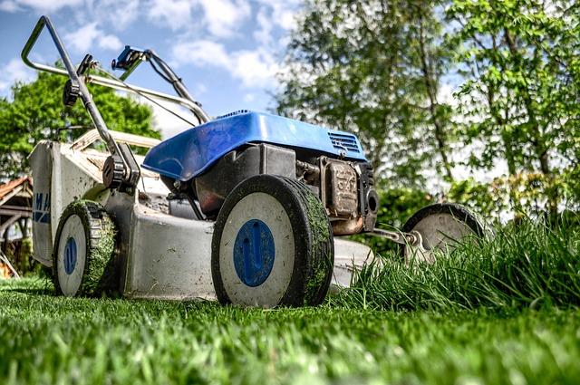 Servicios principales para el mantenimiento de Jardinería