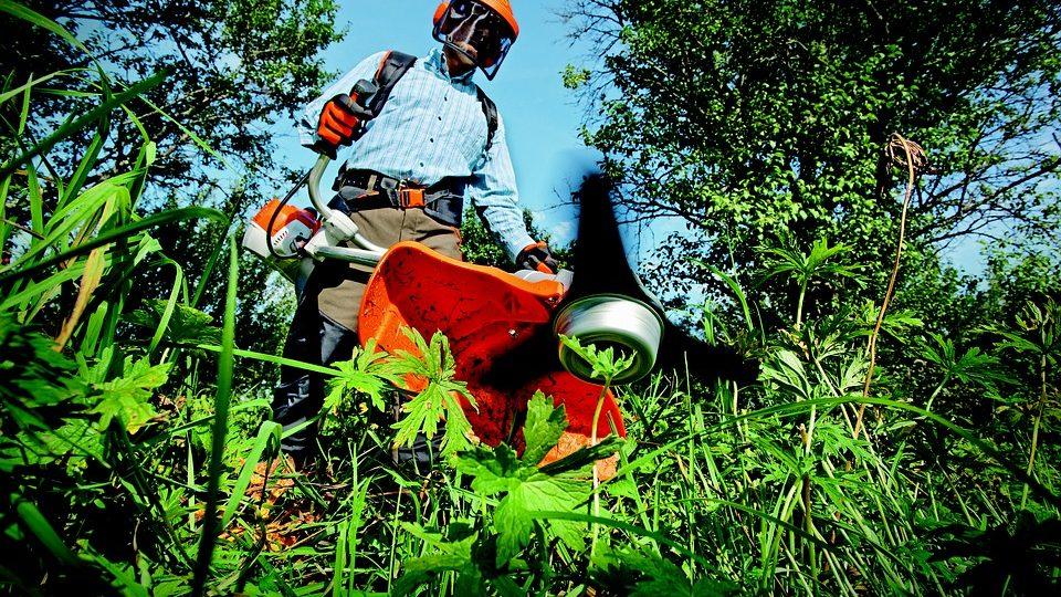 Consejos de jardineria para empresas