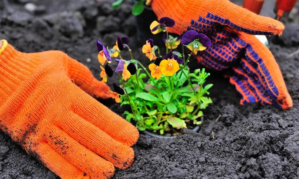 mejores jardineros profesionales